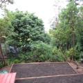 Uphill garden beds