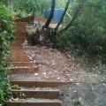 Uphill garden after